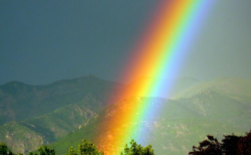 Rainbows and Taxes